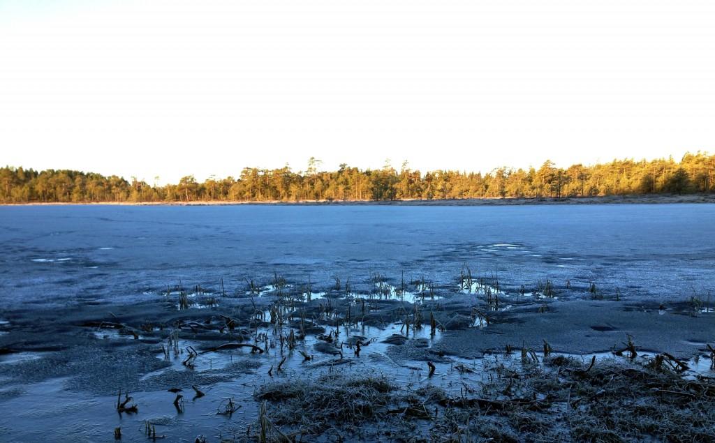 Lakjärvi kevät 2016 021