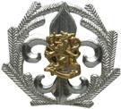 Partiotuote Pj-merkki, hopea