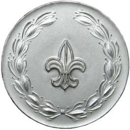 Partiotuote Partiomitali, Hopea Silver