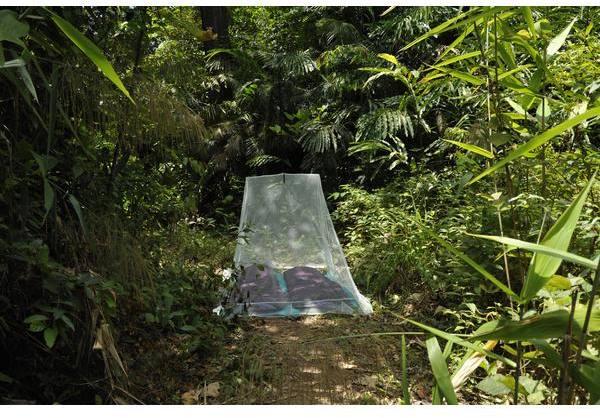 Cocoon Outdoor Mosquito Net Double Ultralight